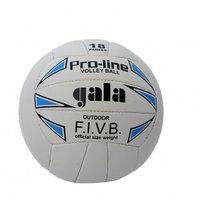 Волейбольные мячи, Мяч волейбольный Gala Pro-Line
