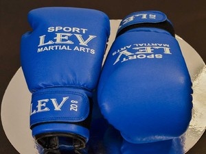 Перчатки для бокса, Перчатки боксерские LEV 10oz