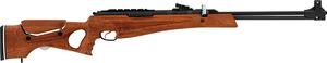 Hatsan, Пневматическая винтовка Hatsan Proxima