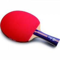 Ракетки для настольного тенниса, Ракетка для настольного тенниса DHS 1002