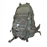 Рюкзак Flyye Fast EDC Backpack RG