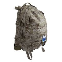 Рюкзак Flyye MOLLE AIII Backpack AOR1